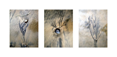 Beach Tracts Series Triptych