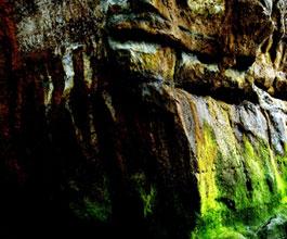 Beach Cave of Encinitas