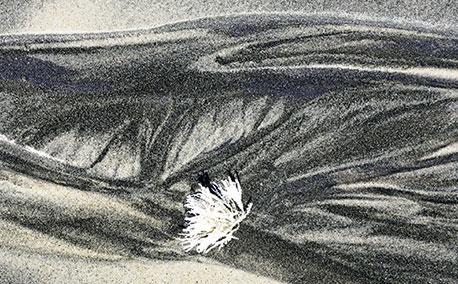 Winter Dunes-2
